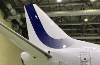 Aircraft painting business grows by 50 per cent at S7 Technics
