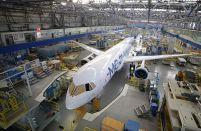 Russian government challenges 'grace periods' for aircraft imports